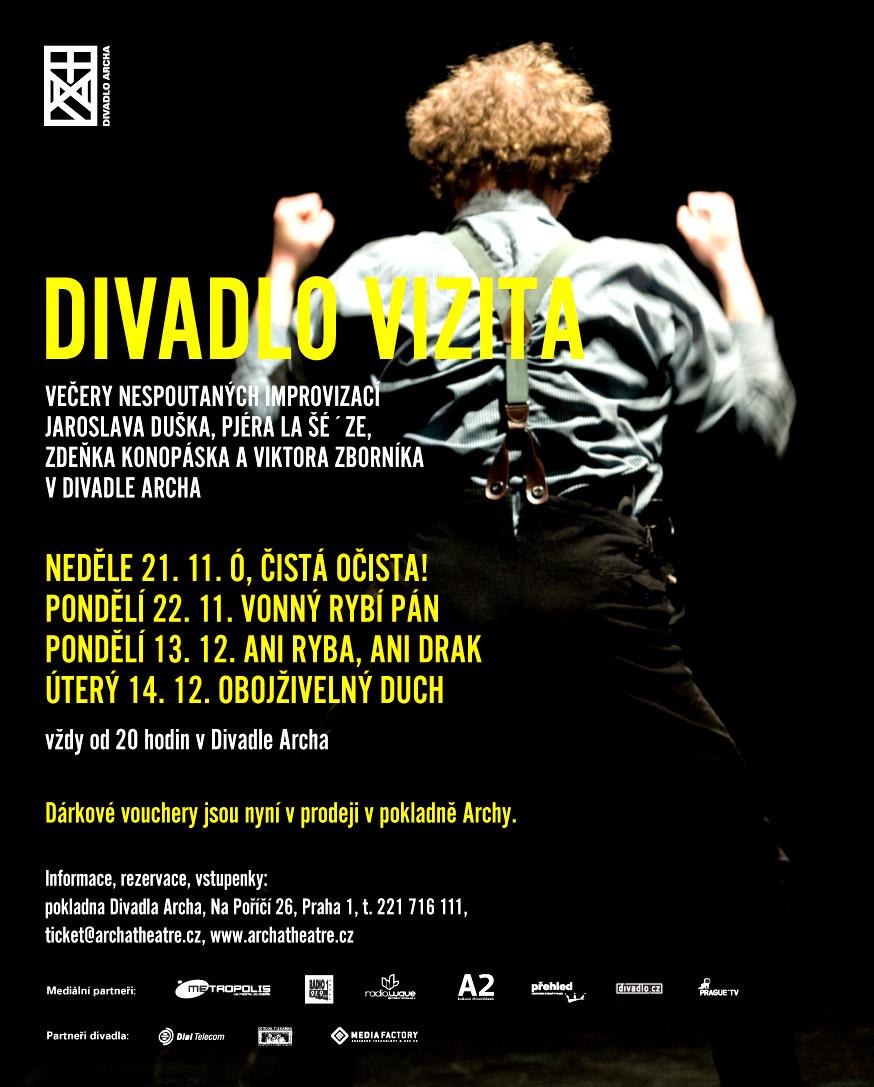 VIZITA 11+ 12 2010